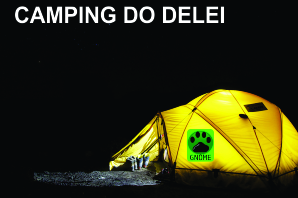 Logo Camping do Delei